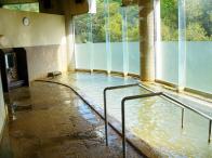 ふれあいセンター 一般浴場の写真