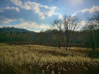 写真 2015-11-01 10 44 11_R