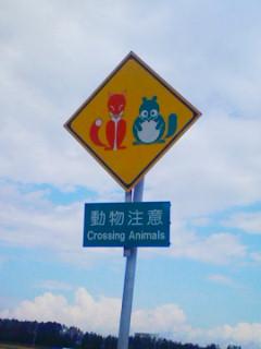動物注意!!